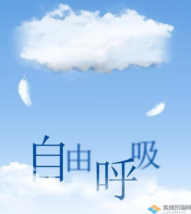 宝仕龙大板全景顶5