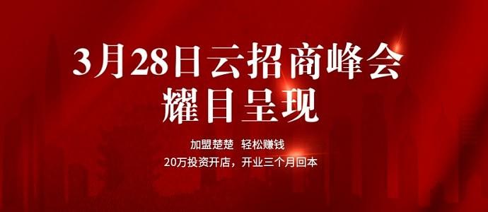3月28日 楚楚顶墙云招商峰会 耀目呈现