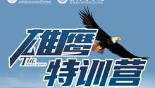 雄鹰特训营丨磨炼内功,振翅高飞